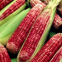 красная кукуруза, red corn