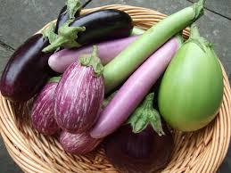 eggplant, баклажан