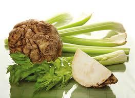сельдерей, celery